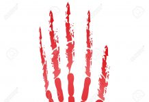 23774544 popular scream red bloody handprints halloween isolated on white Stock Photo 218x150 - Laatste nieuws