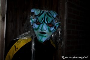 IMG 9236 1 300x200 - Griezelige Halloween in Breukelentuin Gesworen Hoek Reeshof