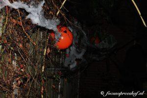 IMG 9237 1 300x200 - Griezelige Halloween in Breukelentuin Gesworen Hoek Reeshof